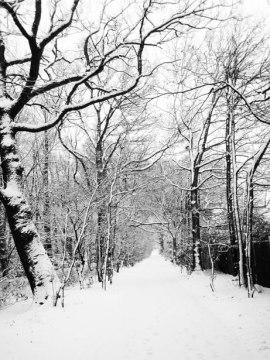 snowy-road-112940433541TU